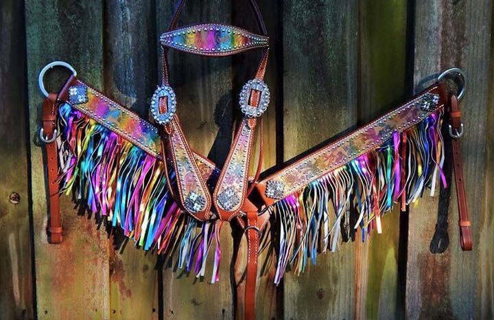 13068 metallic rainbow paisley headstall and breast collar