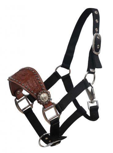 16480 Pony leather Bronc halter